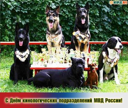 День кинолога в россии поздравления 129