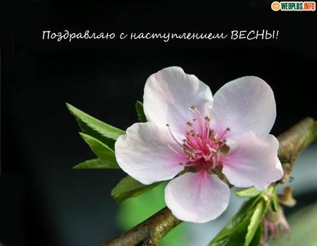 Поздравляю с наступлением весны
