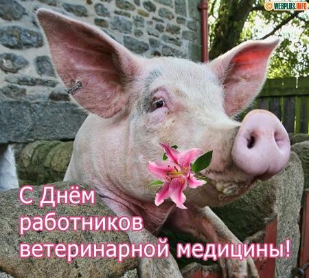 День ветеринарной службы поздравление