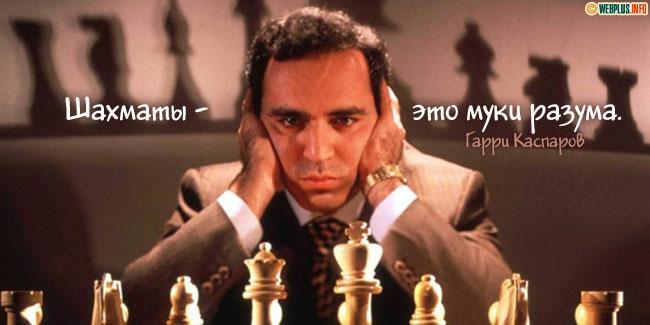 Шахматы - это...