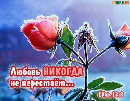 Любовь никогда не перестаёт