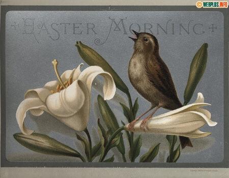 Haster Morning (открытка 1883 года)