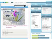 Сайт: Сайт легендарной игры The Sims 3, 2.