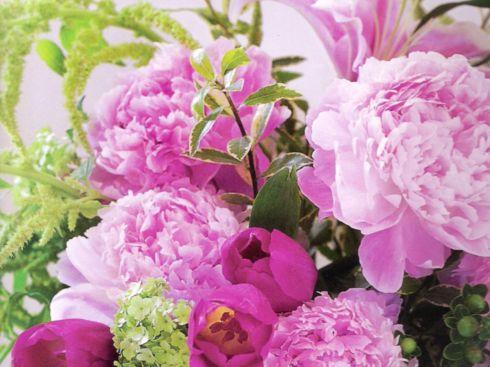 картинки на раб стол цветы: