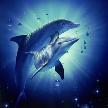 Я тоже присоединюсь и поделюсь с вами двумя схемами дельфинов.