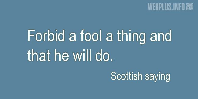 Quotes and pictures for Scottish proverbs and sayings. «Forbid a fool a thing» quotation with photo.