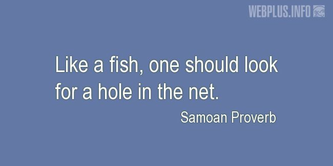 Quotes and pictures for Samoan Proverbs. «Look for a hole in the net» quotation with photo.