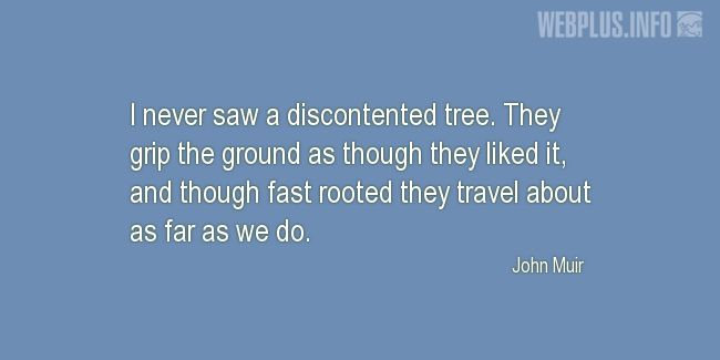 Quotes and pictures for John Muir Day. «I never saw a discontented tree» quotation with photo.