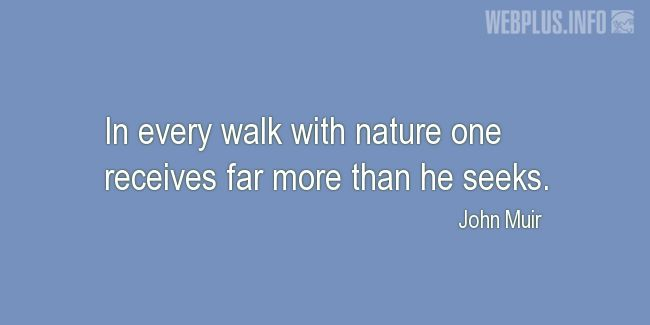 Quotes and pictures for John Muir Day. «In every walk with nature» quotation with photo.