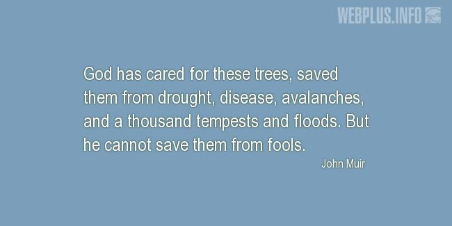 Quotes and pictures for John Muir Day. «God has cared for these trees» quotation with photo.