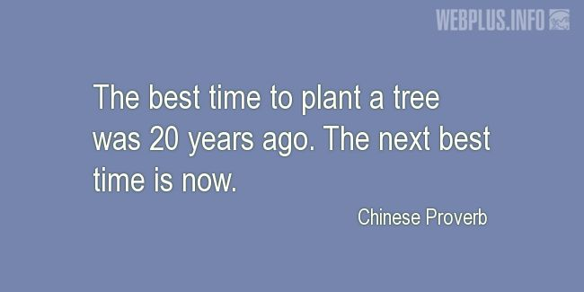 Quotes and pictures for Arbor Day. «Best time is now» quotation with photo.