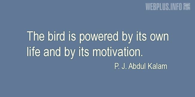 Quotes and pictures for Bird Day. «Powered by its own life» quotation with photo.