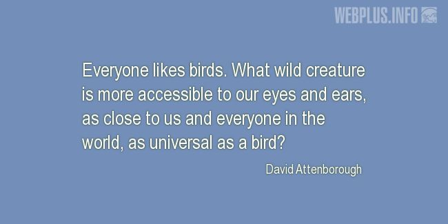 Quotes and pictures for Bird Day. «Everyone likes birds» quotation with photo.