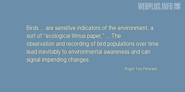 Quotes and pictures for Bird Day. «Sensitive indicators of the environment» quotation with photo.