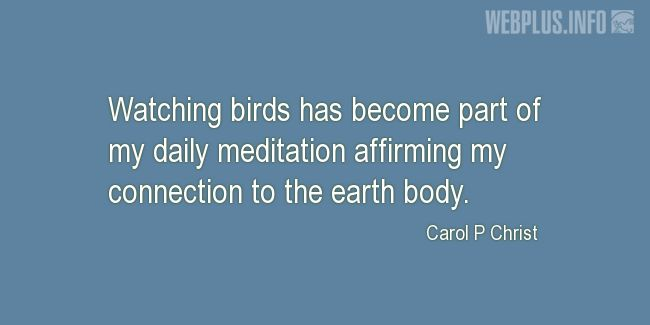 Quotes and pictures for Bird Day. «Part of my daily meditation» quotation with photo.