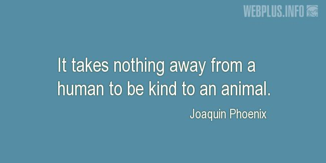 Quotes and pictures for Vegan. «It takes nothing away from a human» quotation with photo.