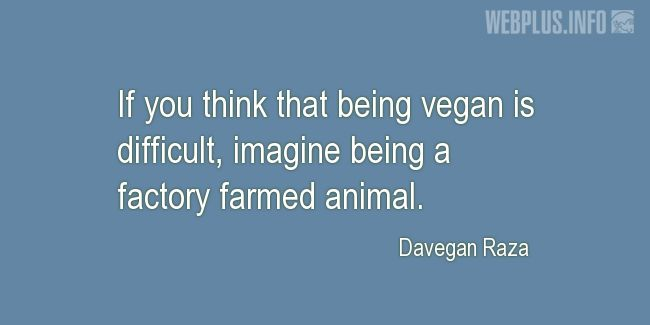 Quotes and pictures for Vegan. «Imagine being a factory farmed animal» quotation with photo.