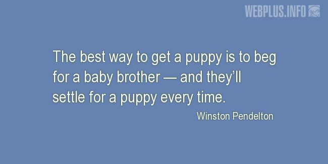 Quotes and pictures for Funny. «The best way to get a puppy» quotation with photo.