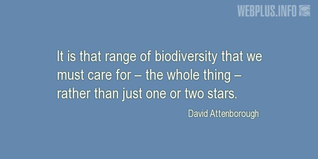 Quotes and pictures for Biological Diversity  (biodiversity). «We must care» quotation with photo.