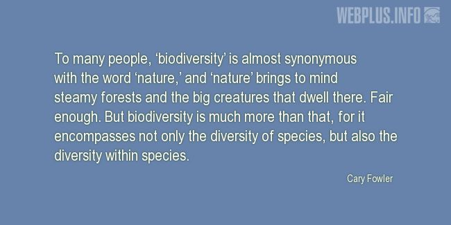 Quotes and pictures for Species diversity. «Biodiversity is much more than that» quotation with photo.