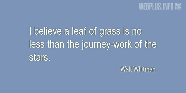 Quotes and pictures for Grass. «No less than the journey-work of the stars» quotation with photo.