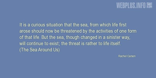 Quotes and pictures for Ocean Conservation. «Curious situation» quotation with photo.