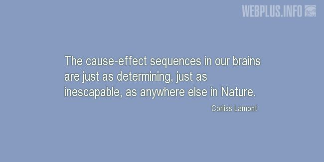 Quotes and pictures for Brains. «The cause-effect sequences in our brains» quotation with photo.