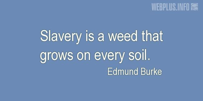 Quotes and pictures for Human trafficking. «A weed» quotation with photo.