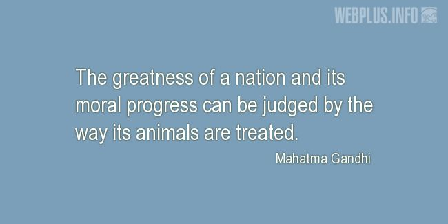 Quotes and pictures for Homeless animals, Adopting animals. «The greatness of a nation» quotation with photo.