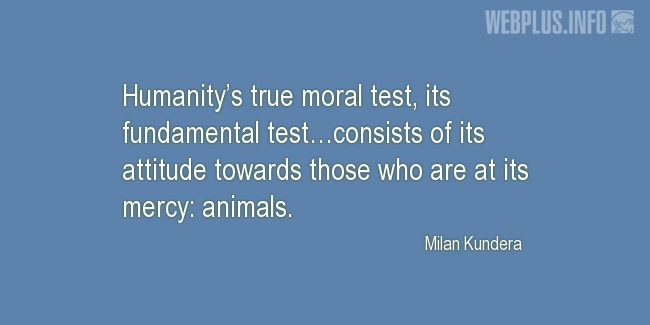 Quotes and pictures for Homeless animals, Adopting animals. «Humanity's true moral test» quotation with photo.