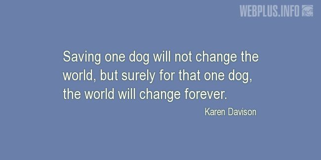 Quotes and pictures for Homeless animals, Adopting animals. «The world will change forever» quotation with photo.