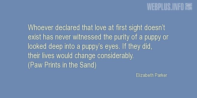 Quotes and pictures for Homeless animals, Adopting animals. «Puppy's eyes» quotation with photo.