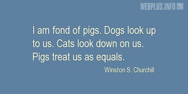 Quotes and pictures for Funny. «Fond of pigs» quotation with photo.