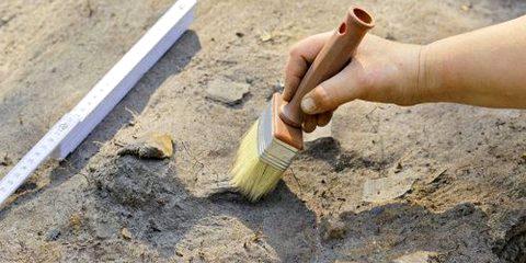 Раскопки свидетельствуют