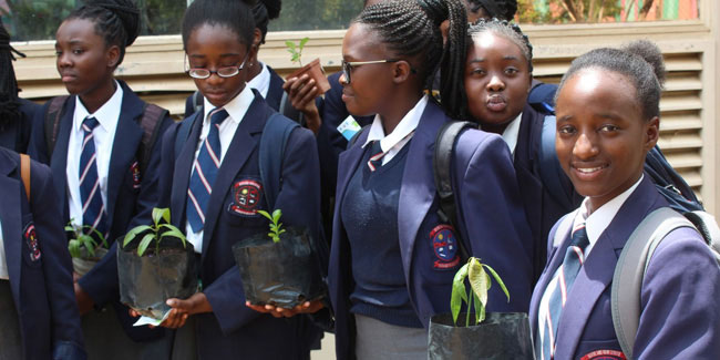8 October - Arbor Day in Namibia