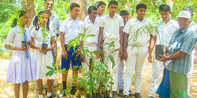 15 November - National Tree Planting Day in Sri Lanka