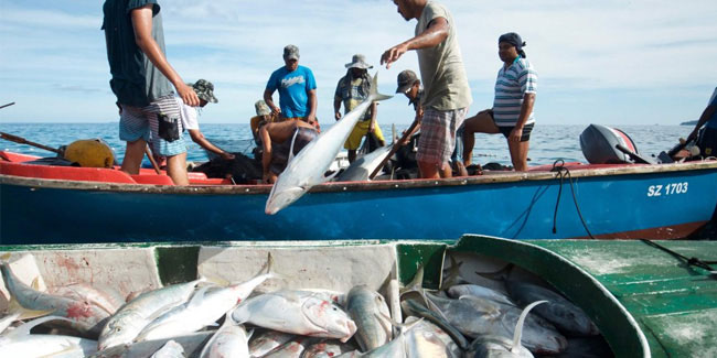 5 June - International Day for the Fight Against Illegal, Unreported and Unregulated Fishing