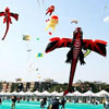 International Kite Festival in Gujarat, India