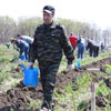 All-Russian Forest Planting Day