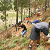 Social Forestry Day in Bhutan