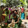 Thai Pongal, Tamil harvest festival in India