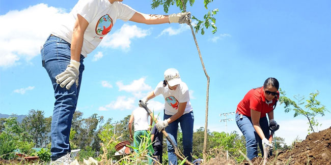 15 June - Arbor Day in Costa Rica