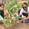 Arbor Day in Pakistan