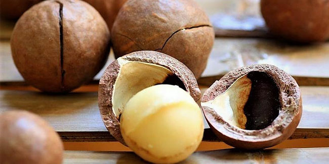 4 September - National Macadamia Nut Day