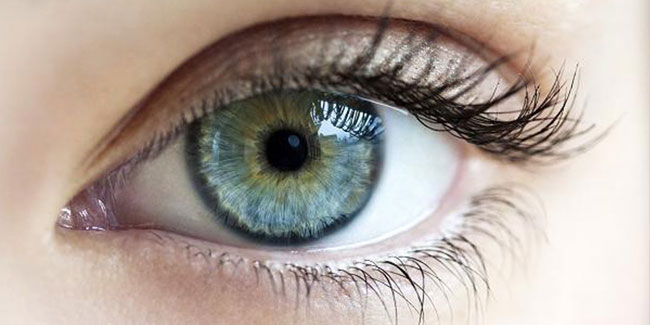 День борьбы с глаукомой