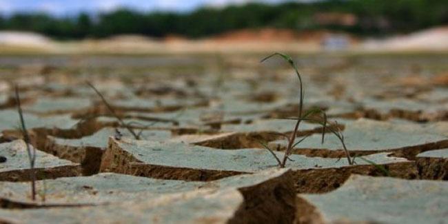 Если запас влаги в метровом слое почвы осенью не превышает 50% от среднегодового уровня или толщина снега не достигает половины среднегодовых показателей, то возникает риск прихода засухи